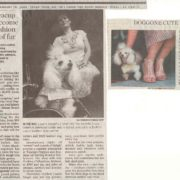 Miami Herald January 2005