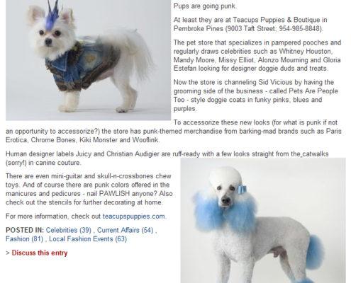 Sun-Sentinel August 2009 Blog Post