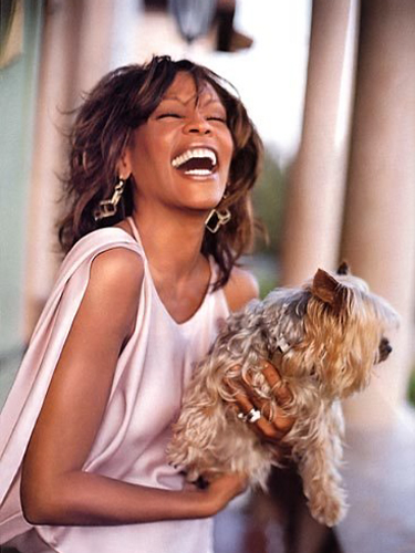 Whitney Houston Teacup Puppies